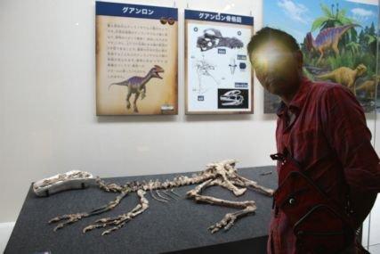 2016sep19恐竜特別展示室3