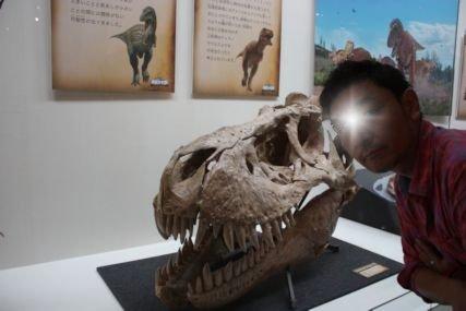2016sep19恐竜特別展示室6