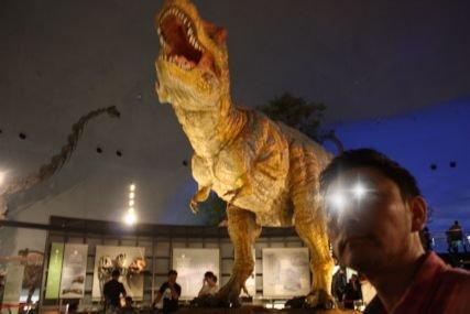 2016sep19恐竜博物館一般2