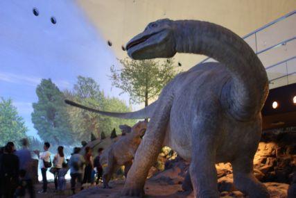 2016sep19恐竜博物館一般6