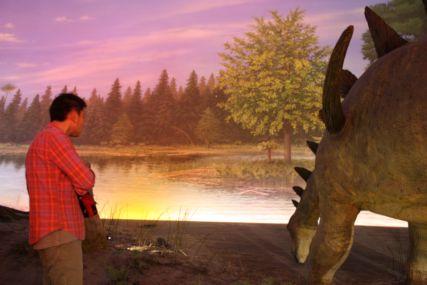 2016sep19恐竜博物館一般7