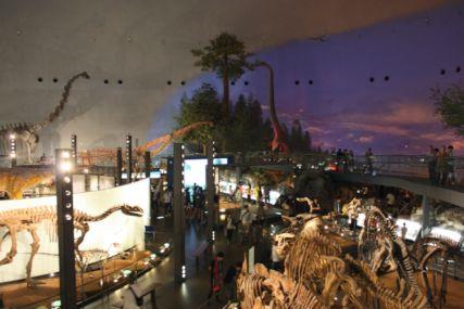 2016sep19恐竜博物館一般9