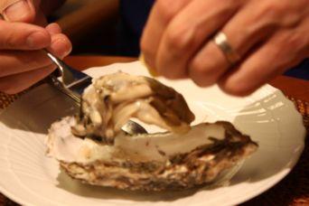 仙鳳趾牡蠣20162