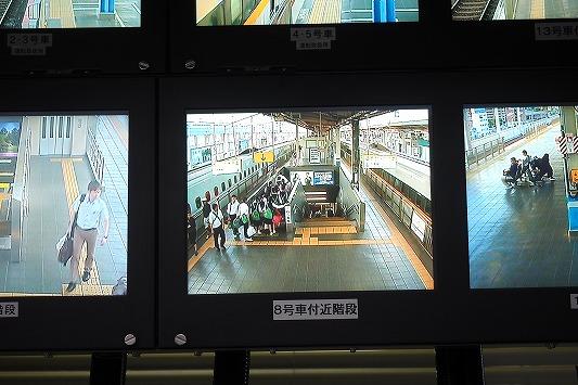 E6030054.jpg