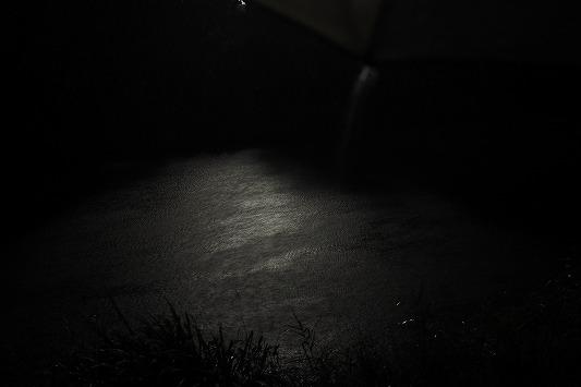 E6120122.jpg