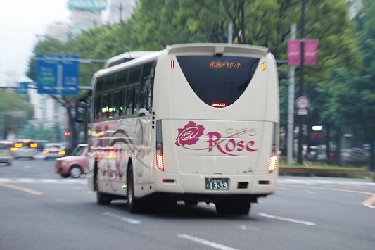 E6190368.jpg