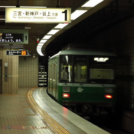 E8120034.jpg