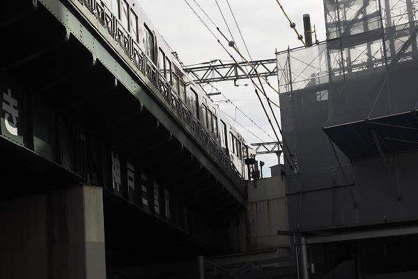 E9170534.jpg