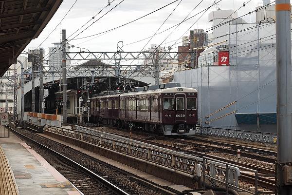 E9170550.jpg