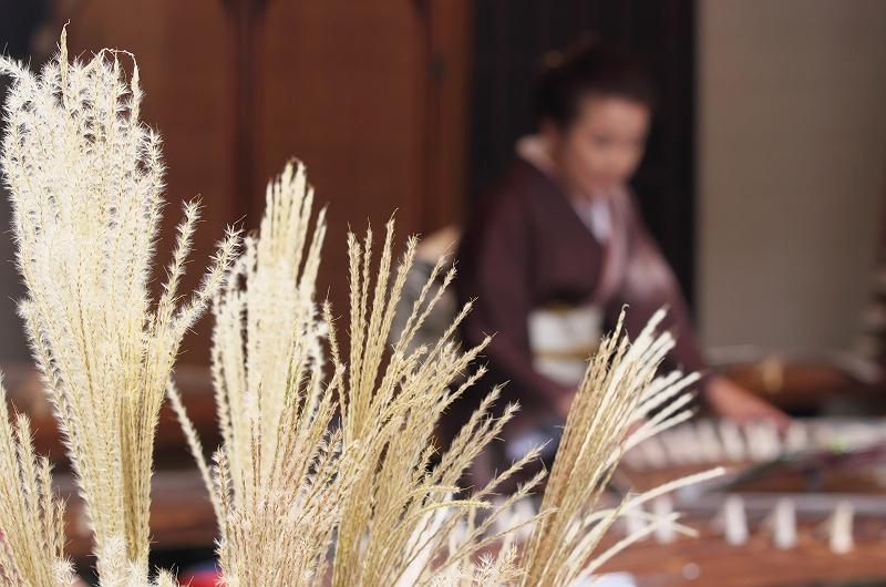 遠州横須賀街道 ちっちゃな文化展 琴の音色