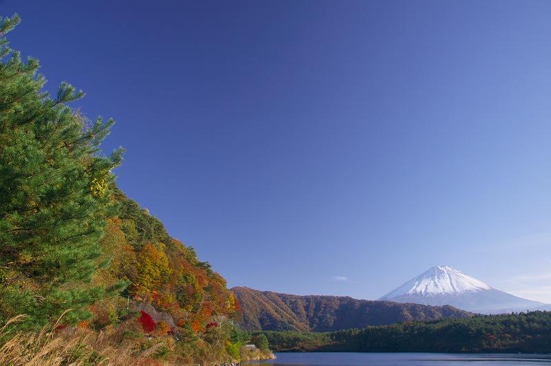 秋晴れの富士