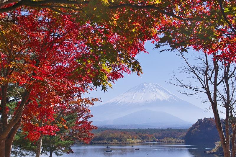 秋の精進湖、そして富士