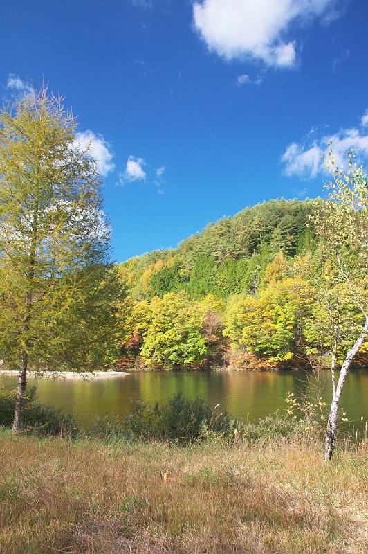 岩倉ダムの秋