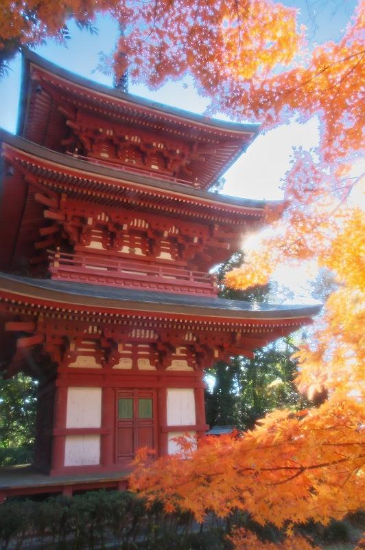エピローグ ~油山寺の紅葉~