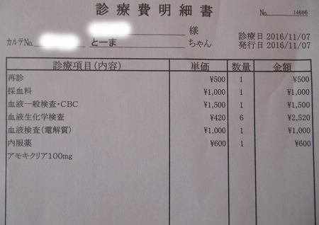 2016-11-07-01.jpg