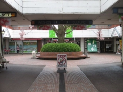 【新店】麺や まつ本-4