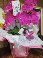 【新店】煮干し中華そば 蓮の花-23