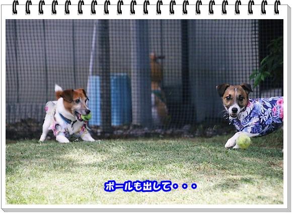 2661ブログNo5