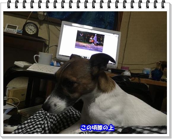 2753ブログNo5
