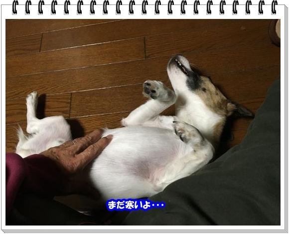 2816ブログNo1