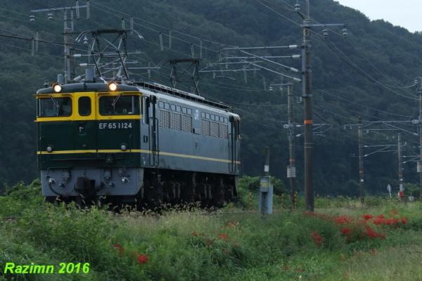 0Z4A5362.jpg