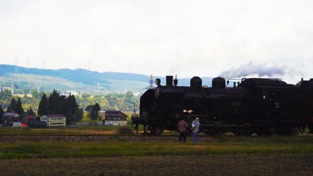 汽車が来た!