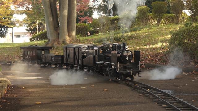 C56の牽引する貨物列車