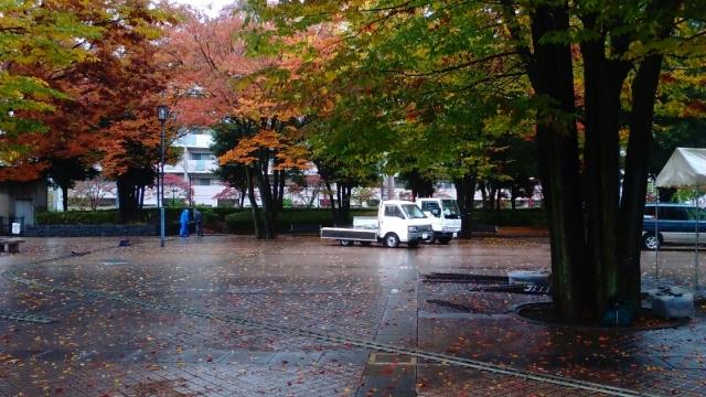 雨の中、第50回日野市産業まつりの準備