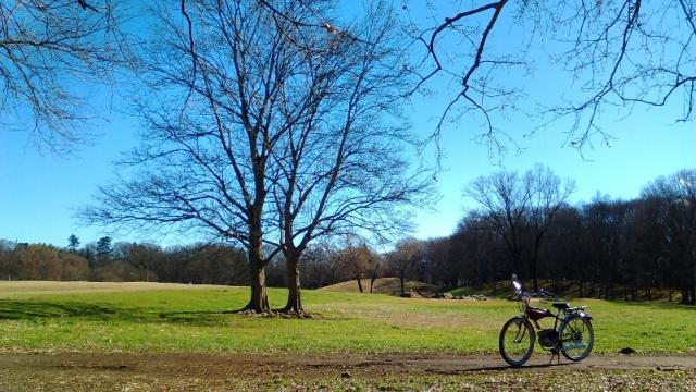 武蔵野の公園
