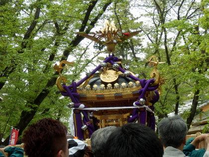 上田 (116)