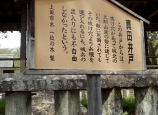 上田 (147)