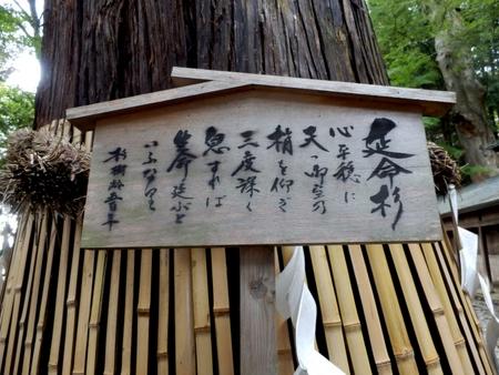 手長神社 (42)