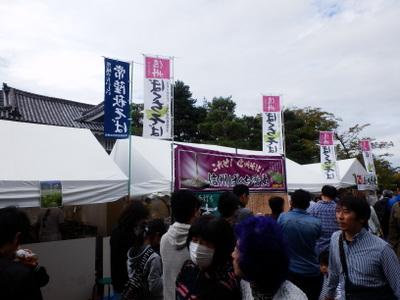 そば祭り (41)