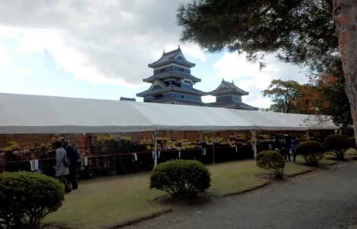松本市民祭 (110)