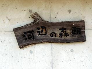 rie12915.jpg