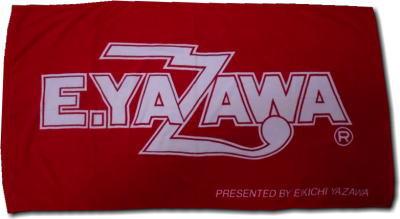 towel2006.jpg