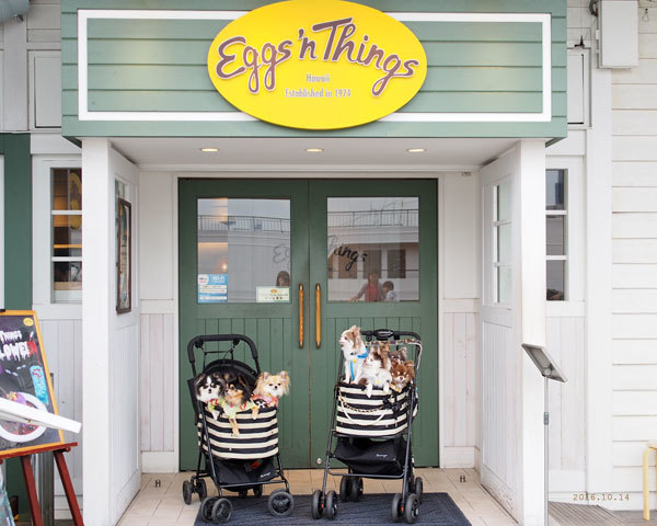 Eggs-n-Things_20161103220844652.jpg