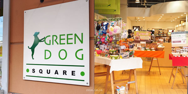greendog.jpg