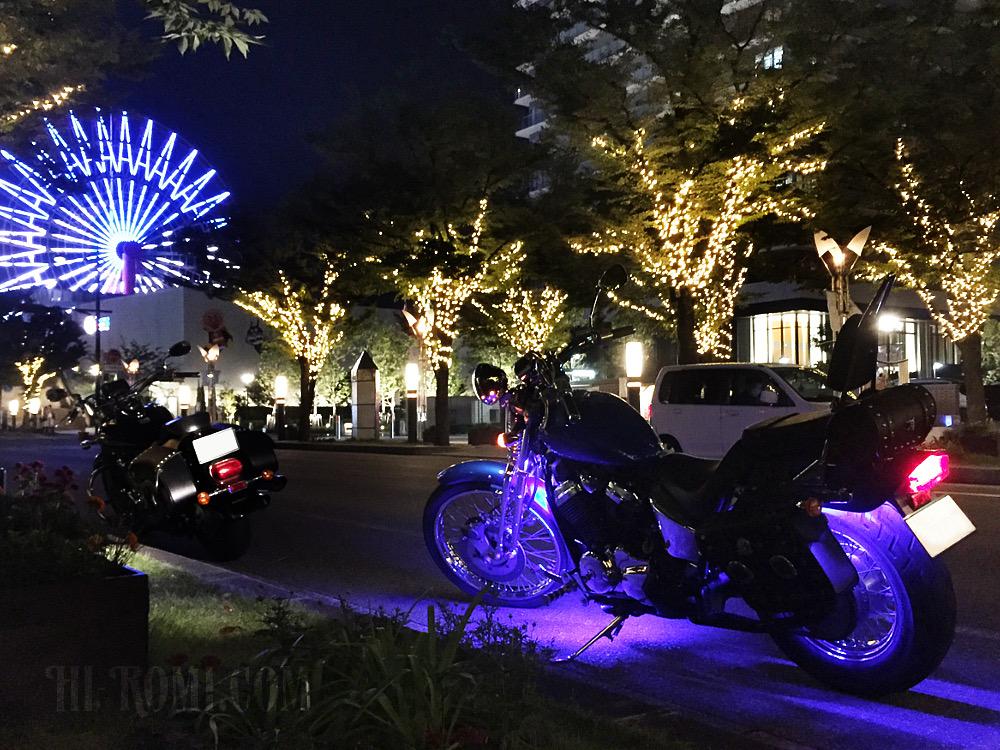 HONDA Steed(スティード) VLS スプリンガー  アメリカン 和メリカン ジャメリカン springer motorcycle