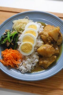 鶏肉と長芋のチェッターヒン風カレー1