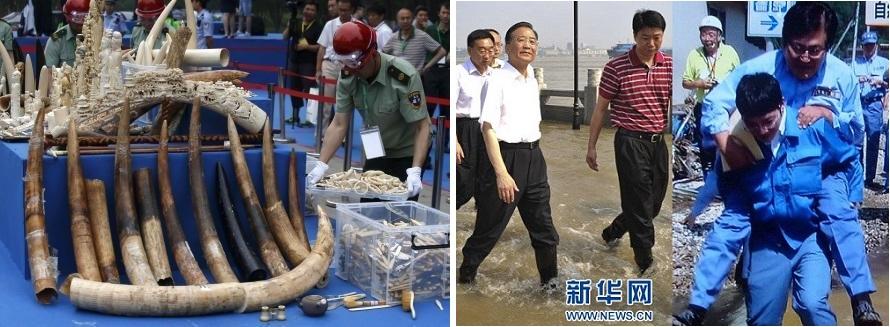 押収された象牙を公開で粉砕する