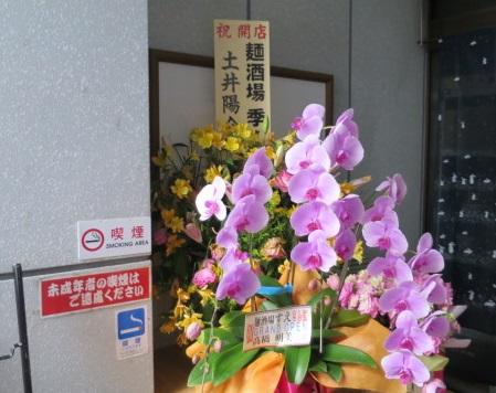 sina-sue8.jpg