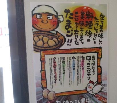 yoshida-sd14.jpg