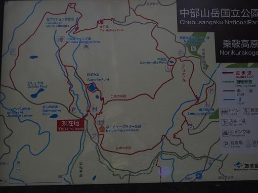 161015乗鞍高原 (209)