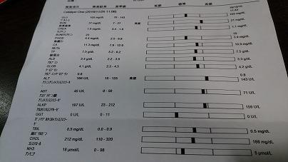 血液検査生化学