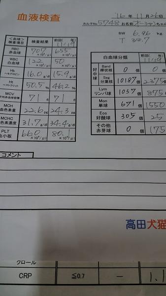 血液検査CBC