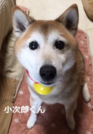 小次郎くん