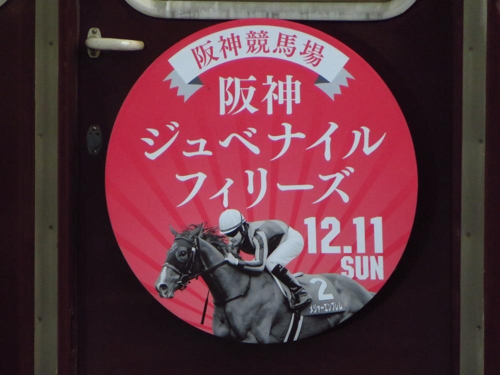 20161218-HK18.jpg
