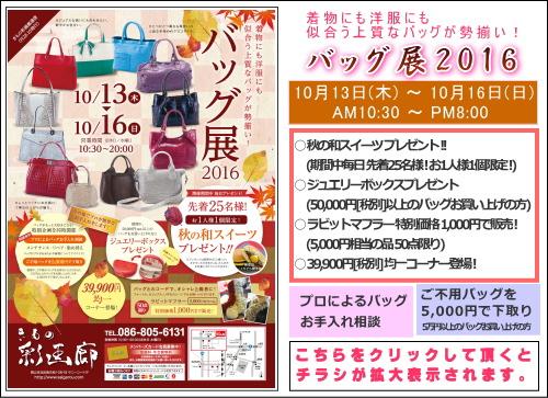 201610-bag.jpg