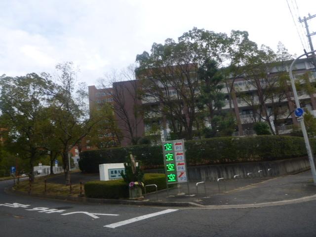 2016-12-26_047.jpg